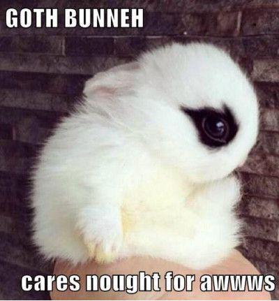 goth bunneh