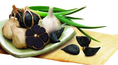 UI_SEONG_Black_Garlic_Farming