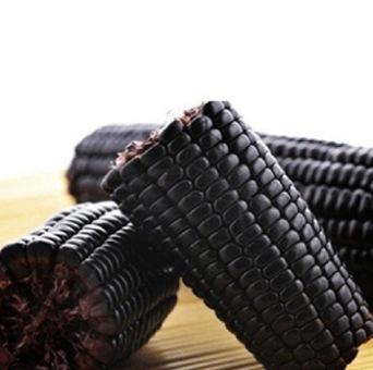 black corn 4