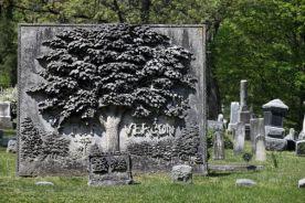 grave tree