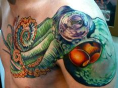 green shoulder octopus